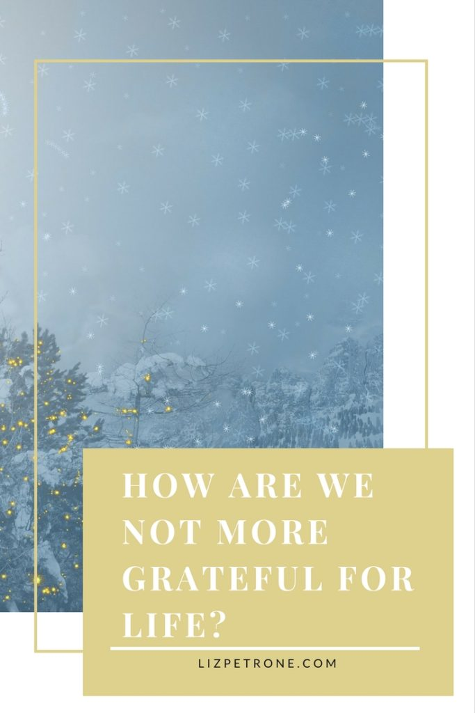 How are we not more grateful for life | lizpetrone.com